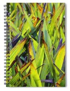 Bloodroot Abstract Spiral Notebook