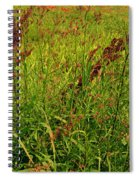 Bloody Battle Of New Orleans 2 Spiral Notebook