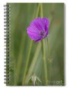 Bloody Cranesbill Flower Spiral Notebook