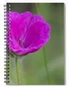 Bloody Geranium Dew Spiral Notebook