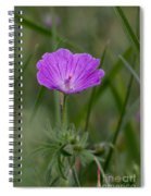 Bloody Geranium Wild Flower Spiral Notebook