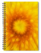 Bloom Of Dandelion Spiral Notebook
