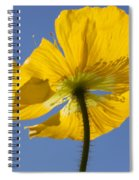 Bloom Time Spiral Notebook