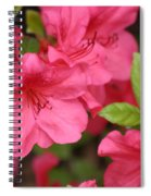 Blooming Azalea Spiral Notebook