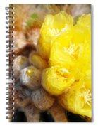 Blooming Barrel Cactus Spiral Notebook