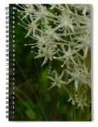Blooming Bear Grass 3 Spiral Notebook