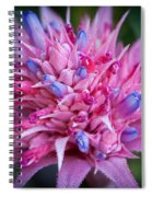 Blooming Bromeliad Spiral Notebook