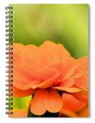 Blooming Marigold Spiral Notebook