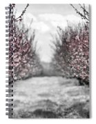 Blooming Peach Orchard Spiral Notebook
