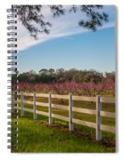 Blooming Peach Tree's At Boone Hall Spiral Notebook