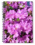 Blooming Pink Azaleas Spiral Notebook