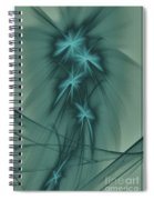 Blooming Stars 2 Spiral Notebook