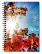 Blooming Sunlight Spiral Notebook