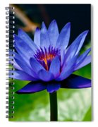 Blooming Water Lily Spiral Notebook