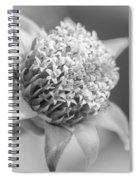 Blooming Weed Spiral Notebook