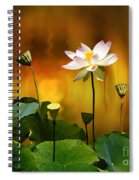 Blooming White Lotus Flower Spiral Notebook