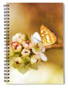 Blooms And Butterflies Spiral Notebook