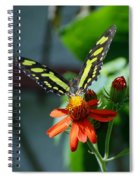 Blooms And Butterfly1 Spiral Notebook