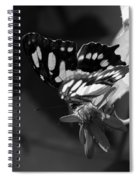 Blooms And Butterfly7 Spiral Notebook