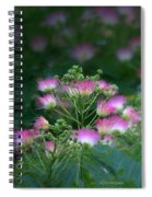 Blooms Of The Mimosa Tree Spiral Notebook