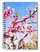 Blosoms Spiral Notebook