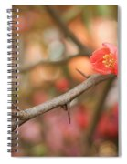 Blossom Amidst The Thorns Spiral Notebook