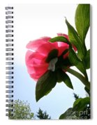 Blossom Bottom Spiral Notebook