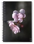Blossom Delight Spiral Notebook