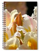 Blossom Top Spiral Notebook