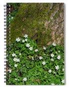 Blossom Windflowers Spiral Notebook
