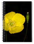 Blossoming Kiss Spiral Notebook