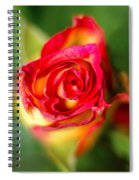 Blossoming Life Spiral Notebook
