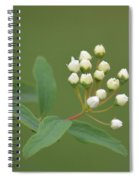 Blossoming Spirea Buds Spiral Notebook