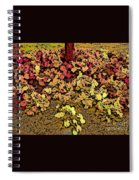 Blossoms And Tree In Yellow And Red Spiral Notebook