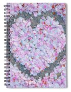 Blossoms Of Love - Cherry Blossoms 2013 - 071 Spiral Notebook