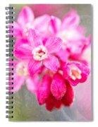 Blossoms Of Spring - April 2014 Spiral Notebook