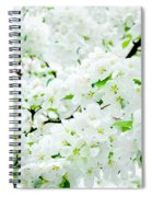 Blossoms Squared Spiral Notebook
