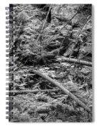 Blow Down Glacier National Park Bw Spiral Notebook