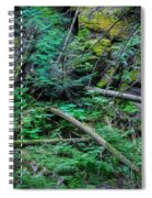 Blow Down Glacier National Park Painted Spiral Notebook