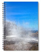 Blow Hole Blow Out Spiral Notebook