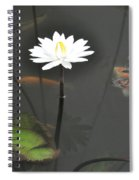 Blowing Bubbles Spiral Notebook