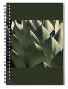 Blue Aloe Spiral Notebook
