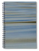 Blue And Gold Spiral Notebook