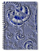 Blue And Silver 1 Spiral Notebook