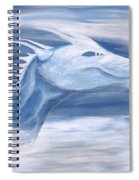 Blue And White Dragon Spiral Notebook