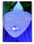 Blue Balance Spiral Notebook