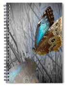 Blue Beauty Spiral Notebook