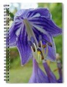 Blue Bell Flower Spiral Notebook
