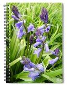 Blue Bell Spiral Notebook