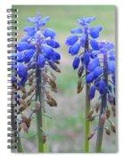 Blue Bells 2 Spiral Notebook